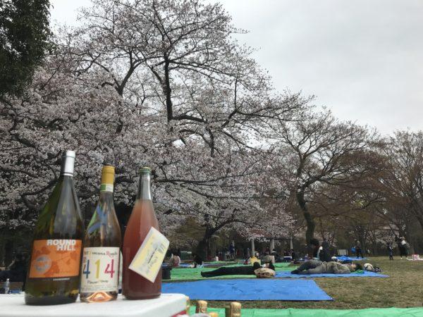 代々木公園オーガニックワイン会~自然派ワインを自然の中、太陽の下で、国民の休日をゆったりたのしむ会~